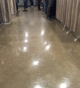 Eco polish concrete floor ottawa